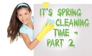 SpeedCleaning.com blog post pic - It's Spring Cleaning Time Part 2